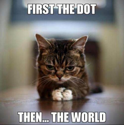 2d-dotcat